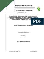 chile abanero cultivo.pdf