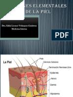 lesioneselementalesdelapiel-120329155456-phpapp02