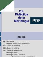 2_2_Morfología