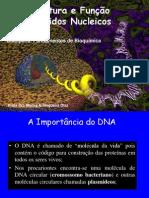 Ácidos Nucleicos - Aula 1