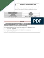 Reporte de Inspeccion Proyecto Carora-Quebrada Arriba.pdf