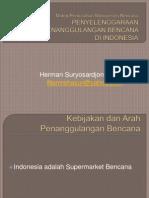 Penyelenggaraan Penanggulangan Bencana Di Indonesia