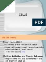 cells[1].ppt