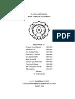LAPORAN TUTORIAL SKEN 2 GERIATRI.docx