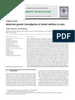 Molecular Genetic Investigation of Dental Attrition in Mice