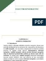 Audit Energetic (1)