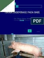 Teknik IB Babi