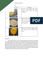 Laporan RPH Embrio Ayam 3,5,Dan 7