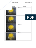 Laporan RPH Embrio Ayam 15,17,19,21