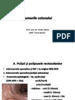 10. Tumorile Colonului Prof v Stoica 2013