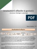 _Analizatorii Olfactiv Si Gustativ (s)