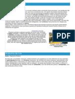 Lula - Ficha do Cefalópode - Como funciona a lula.pdf