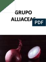 Grupo Alliaceas