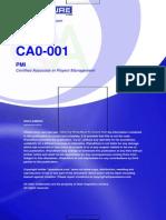 CA0-001