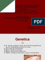 Deficiencia de Hierro en Lechones.pptx (1)