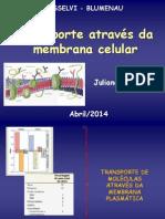 Transporteatravsdamembranacelular_2014_20140426161841
