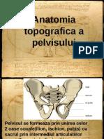 Anatomia Topografica a Pelvisului