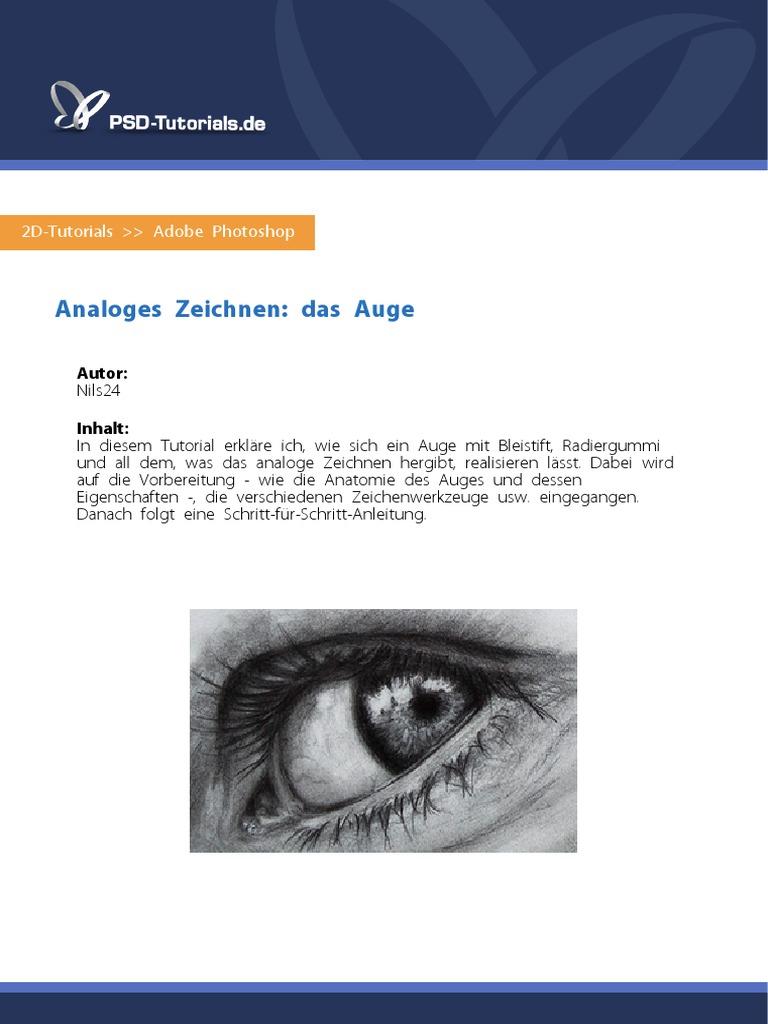 Großzügig Iris Auge Anatomie Zeitgenössisch - Anatomie Von ...