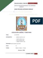 EL DESPIDO - Legislación Laboral y Tributaria