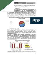 Avance Estadistico_Subsector Electrico - Enero 2014