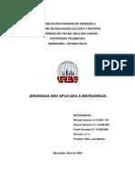 0 JerarquiaSDHAplicadaaMicroondas.pdf