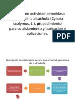 Enzima Con Actividad Peroxidasa Aislada de La Alcachofa