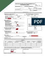 WPS Informe 2