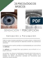 1 Procesospsicologicosbasicos Sensacionypercepcion 130121160910 Phpapp01