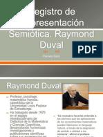 Registro de Representación Semiótica