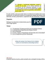 amapro directo uvm.pdf
