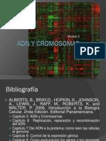 1. ADN y Cromosomas