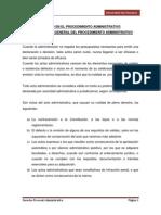 Nulidad en El Procedimiento Administrativo - Roy
