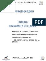 Guia Fundamental Del Control Organizacional