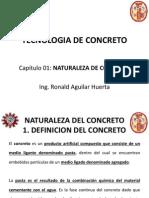 Capitulo 01 Naturales Del Concreto Concurso Ordinario 2013