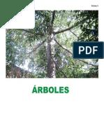 Libro Chab.pdf