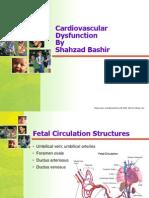 Congential Heart Diseases