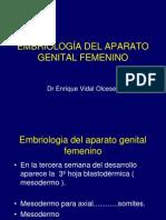 Embriologia Genitales Femeninos URP