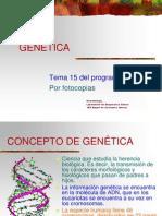 15_genetica