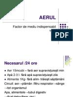 AERUL1