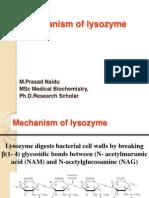 Lysozome Mechanism