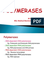 Polymerases,