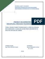 Proiect-PTM