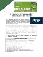 Formatos de Formulacin Del Proceda