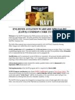 EAWS Aviation