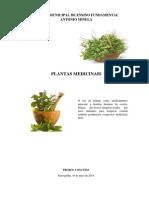 FICHARIO PLANTAS MEDICINAIS