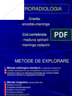 Neuro curs fundeni