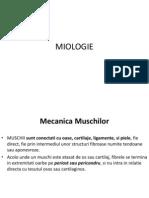 Miologie
