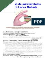 Cartel del Concurso de Microrrelatos. Convocatoria de 2014 del Concurso Literario del IES Lucas Mallada