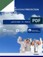 8. WP PCIP Que Es p2p
