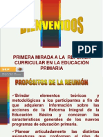 Diapositivas Reforma Integral Primaria 2009